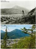 Top: historic photo of town from recently logged area. Bottom: modern photo of town partially obscured by trees