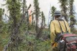 Firefighter hiking toward fire