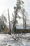 A fallen tree in the Headquarters area separates a power pole from its support pole after the ice storm.
