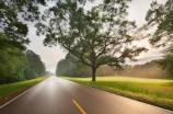 A photo of morning light, Natchez Trace Parkway