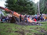 Many members of the Sitka community pull on ropes to raise a reclining pole.