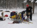 A Yukon Quest musher works with his dogs at Slaven's during the 2006 Yukon Quest.