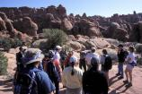 An interpretive stop on the way into the Fiery Furnace.