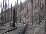 Upper Crossing after fire