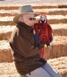 park volunteer with macaw puppet sits on hay in audience seating area