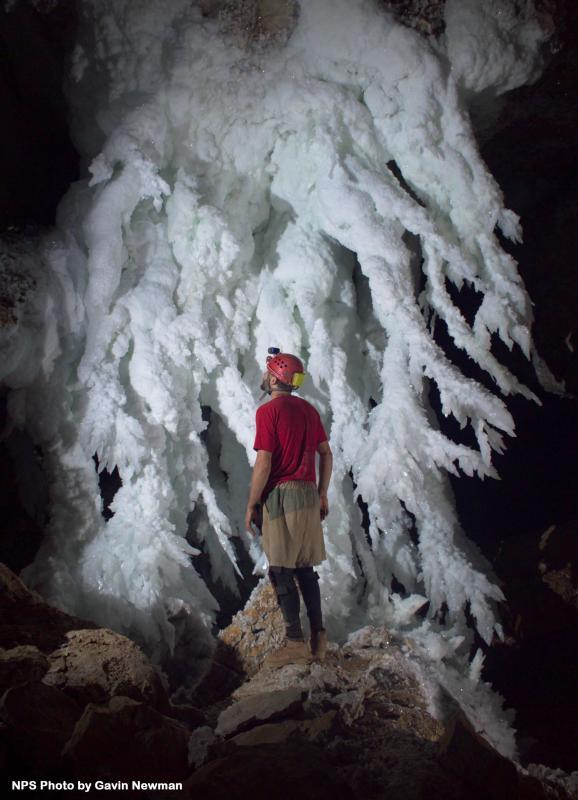Bildresultat för carlsberg caves