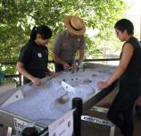Volunteers learn how rivers move with the river table.