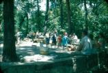 A Travertine Island picnic crowd.