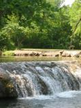 The Little Niagra waterfall on Travertine Creek is one of the most popular swimming holes in the park.