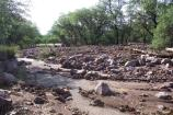 Four debris flows came together, making one massive rockslide that landed in the picnic area.