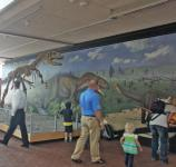 The Allosaurus skeleton & new mural