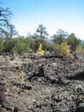 The black cairns can blend in with the black lava landscape; careful navigation is required out here since landmarks can be out of view.