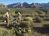 Middle School aged youth learn about desert plant adaptations on the Tonto Platform of Grand Canyon.