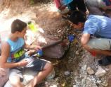 Expeditions Participants collect Macro Invertebrates in Garden Creek during their stay at Indian Garden.