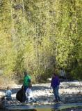 Volunteers at Cottonwood Creek cleaning up trash, 2013.
