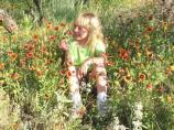 A young girl enjoys the wildflowers around Lake Meredith.