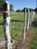 Looking along the fenceline of one of the corrals