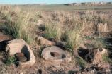 Manos in Metates, Petrified Forest National Park
