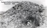 Although it was a known archaeological site, to the untrained eye the ruins at (what is now) Tuzigoot National Monument looked like a pile of rubble. Over the 600 years since abandonment the walls had fallen in on themselves and plants had crept up the hill.