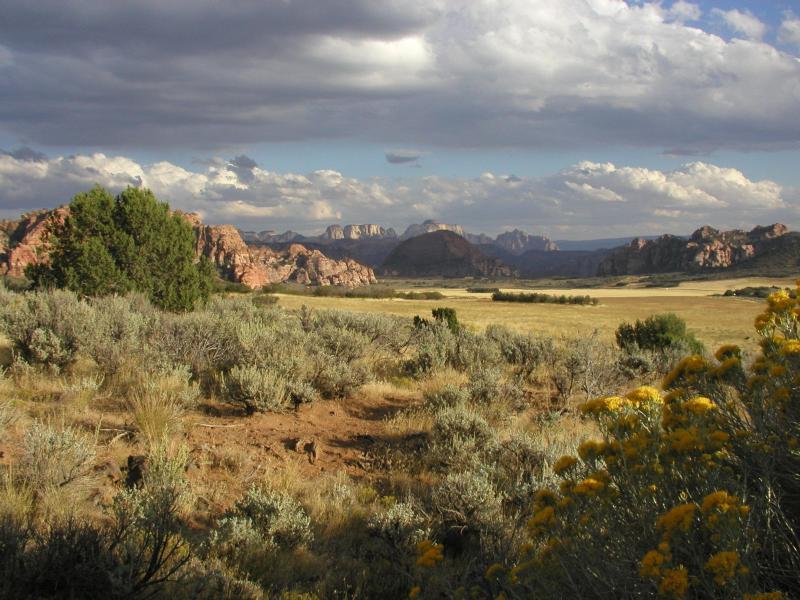 Photo gallery u s national park service for 67 park terrace east