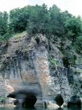 color photo of gray & tan limestone cliff with holes at the river level and forest on top