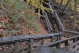 Stairs down to Brandywine Falls