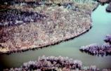 Aerial image of mounds outlined in white, along the Mississippi River.