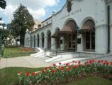 Tulip beds with red and pale yellow flowers adorn the yard of the Quapaw Bathhouse.