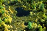 Arial Photo of Pinhook Bog.