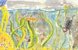 Winner, Mighty Mississippi, 2011. Watercolor of river creatures.