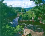 The narrow, rocky gorge of the Dalles creates dramatic views and interesting rock features. It is bordered by Wisconsin and Minnesota State Parks. Visit them to see the