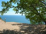 Lake Michigan, Sand Dunes, and a Cottonwood Tree at the Lake Michigan Overlook on the Pierce Stocking Scenic Drive.