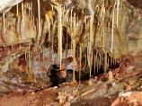 Stalactites are rare in Wind Cave