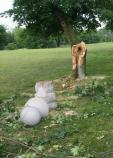 Monument toppled by a tree knocked down during storm.