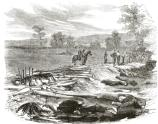 Confederate dead in Bloody Lane