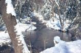 Big Hunting Creek in the winter of 1972 with snow.