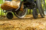 Accessibility on the Spicebush Trail in Chestnut Picnic Area