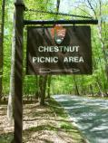 Chestnut Picnic Area Sign