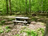 Owens Creek Picnic Area table and grill