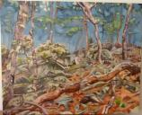 Oil Painting by Emily McGrew, 2011 Catoctin Mountain Artist-in-Residence,