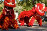 Choy Mei Leadership Institute performs traditional Chinese lion and dragon dance, and synchronized drumming