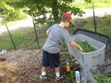 Feeding the compost
