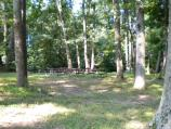 Area D1 picnic area is located in a a stand of trees providing a lot of shade
