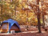 a tent in the campground with the Fall colors surrounding the campsite