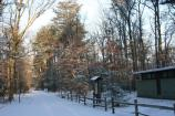 The B loop of the Greenbelt Park campground in the Snow