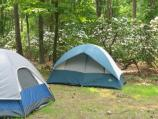 Two tents in the Greenbelt Park campground