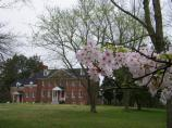 spring at Harmony Hall