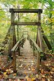 A view of the bridge on Laurel Loop trail as seen in autumn.