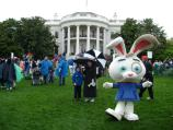 Another Strolling Character on the South Lawn of the White House