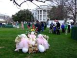 The 2008 White House Easter Egg Roll will focus on the importance of ocean conservation to our national heritage, economy, and security. As children explore the White House grounds, they will learn about our oceans and how to preserve them for future generations. Through education and volunteerism, all families can make a difference in keeping our oceans clean.